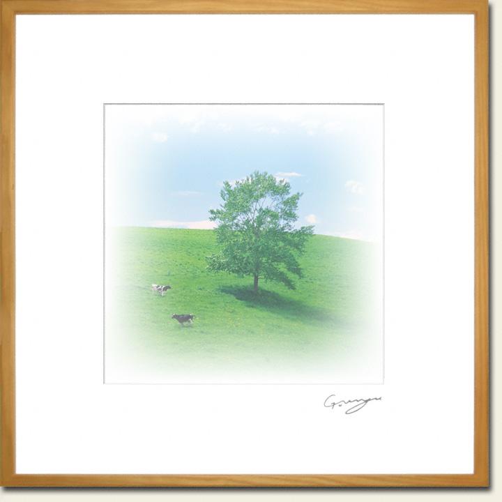牛と一本の木と春の丘