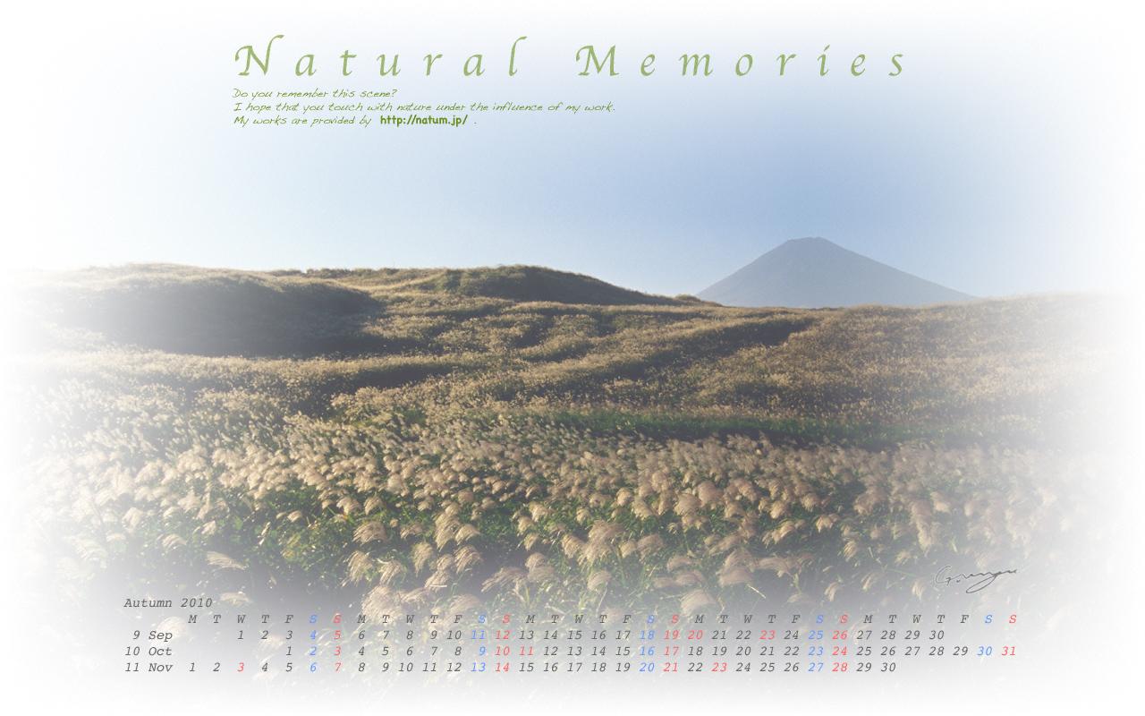 2010年秋(9月〜11月)カレンダー 〜富士山とススキの原〜