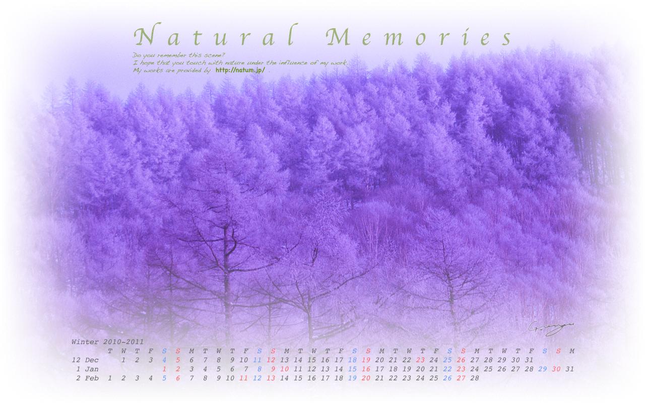 2011年冬(12月〜2月)カレンダー 〜薄明のカラマツ林の霧氷〜