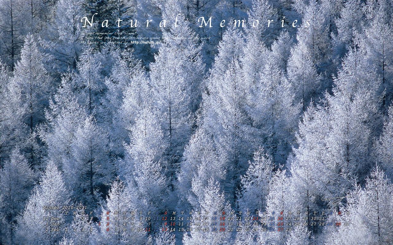 2011冬-一面に並ぶカラマツの樹氷林(1280 x 800)