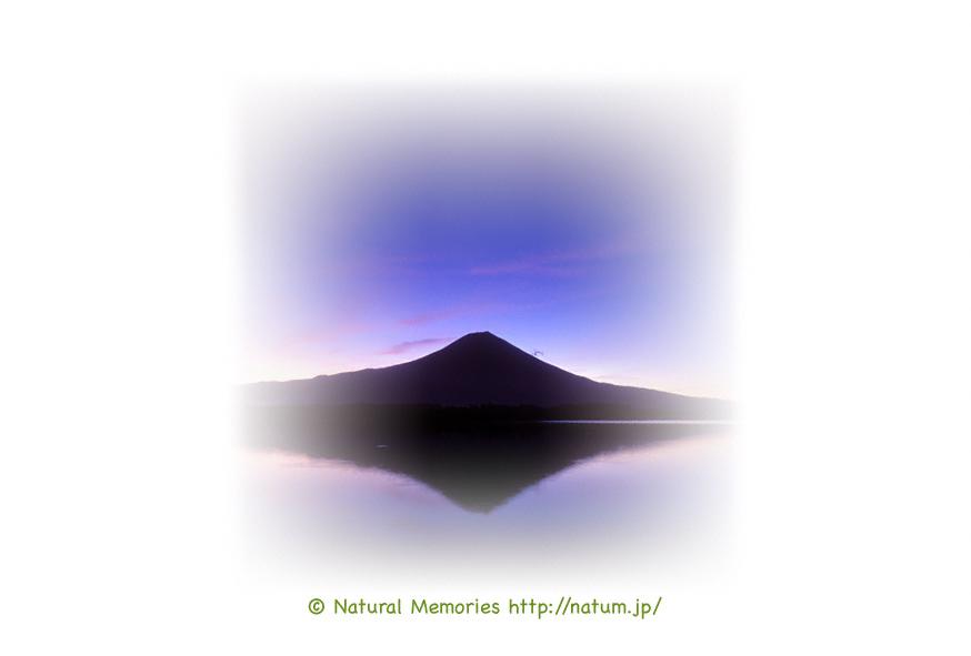 保護中: 薄明の逆さ富士