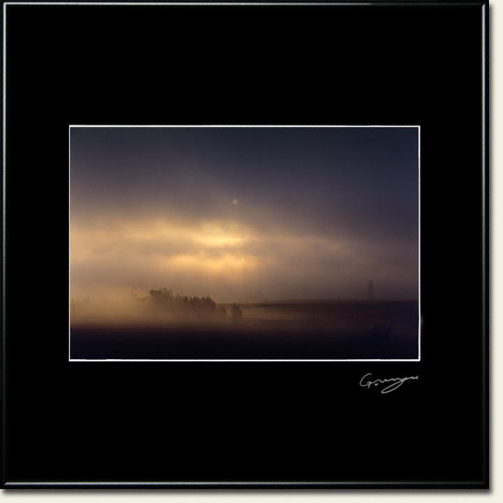 白い太陽と朝霧の丘