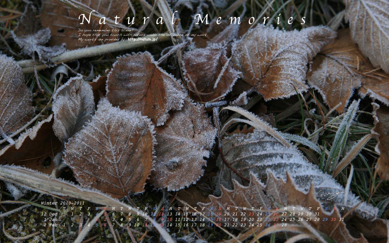 2011年冬(12月〜2月)カレンダー 〜霜の落ち葉〜
