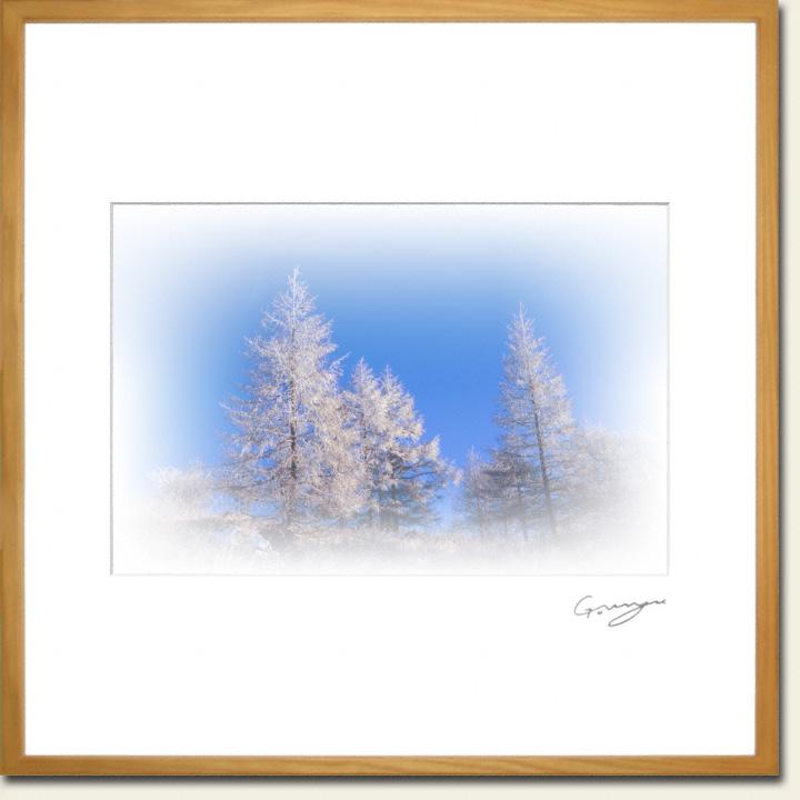 青空と山頂のカラマツの樹氷