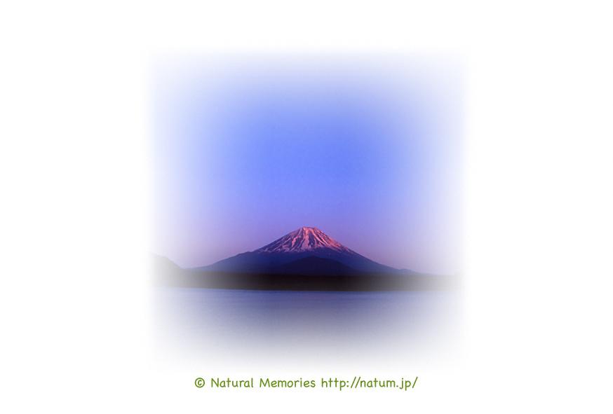 保護中: 赤富士