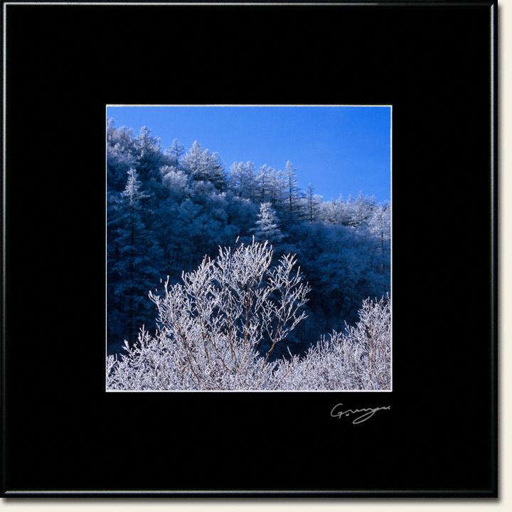 青空と山陰に輝く樹氷