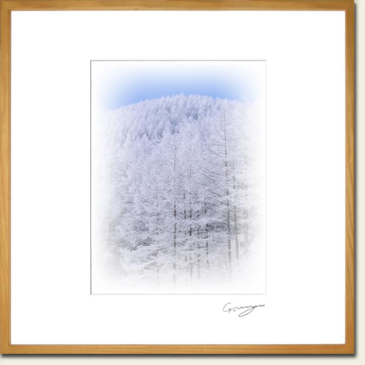 青空と樹氷のカラマツの山