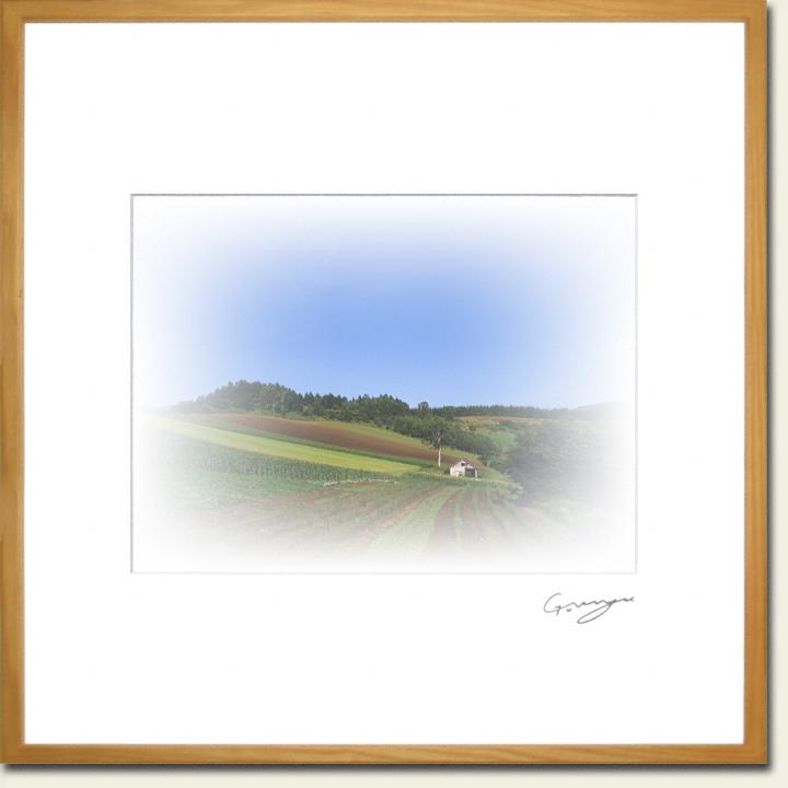 青空と畑と白い牛小屋