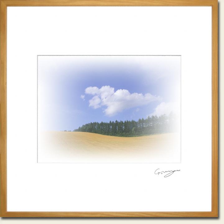 青空と波打つ麦畑とカラマツ並木