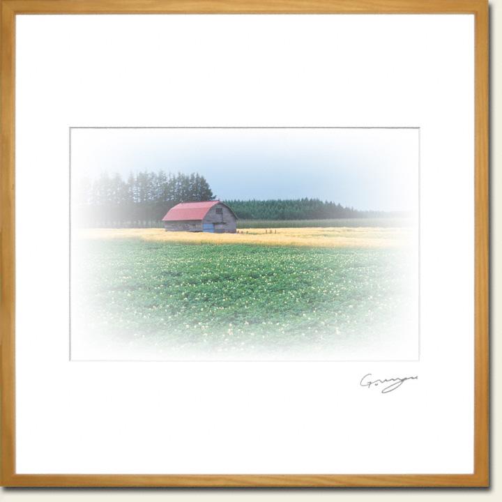 ジャガイモと麦畑の中の赤い屋根の小屋
