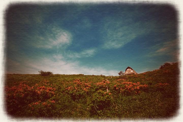 青空とレンゲツツジの山小屋