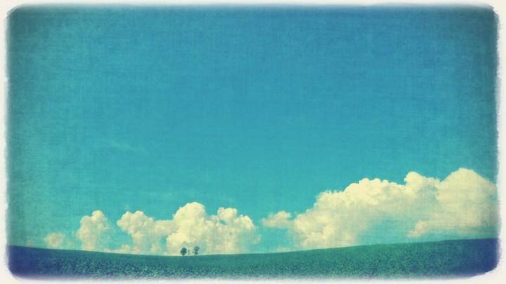 入道雲と親子の木