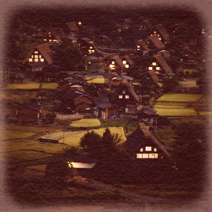 明かりの灯った合掌造りの集落と実りの田