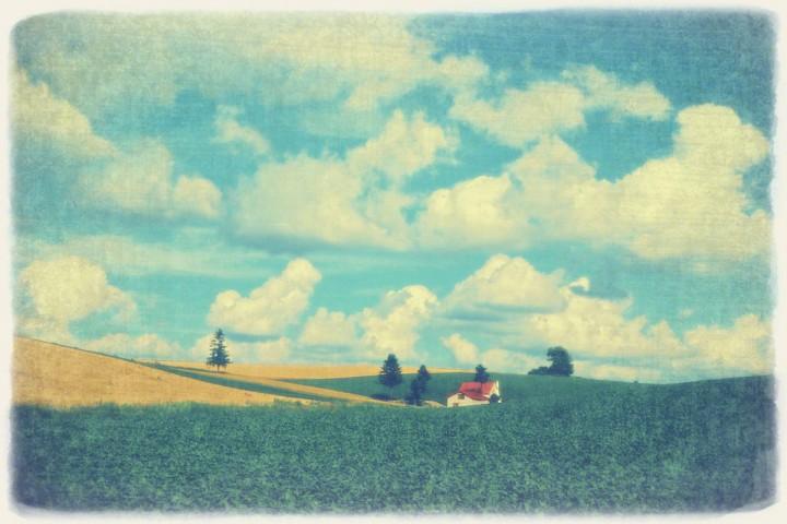 夏の雲とジャガイモ畑と赤い家