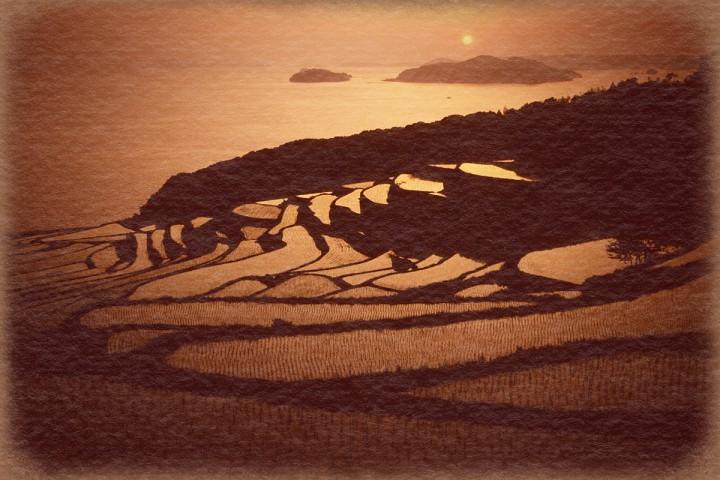 夕日と海を見下ろす棚田