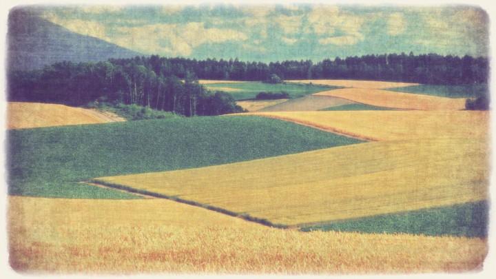 夏の雲とパッチワークの丘