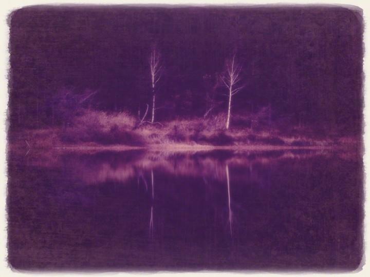 夕闇の湖に映る落葉した白樺