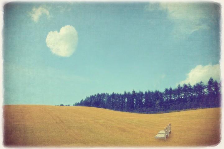 ハートの雲と波打つ麦畑の白い椅子とカラマツの並木