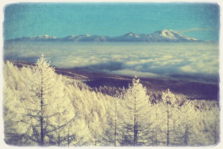 カラマツの樹氷と雲海の浅間山
